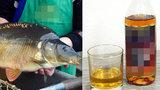 Máma poslala syna pro kapra: Koupil si rum a skončil na záchytce