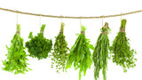Které bylinky vám pomohou od zdravotních problémů? Naučte se je sušit!