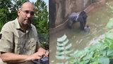 Ředitel pražské zoo o zastřelení gorily: Uspání mohlo situaci fatálně zhoršit