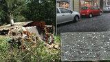 Silná bouřka zlila Šumavu, Prahu, Českou Lípu, festival i skauty. Sledujte radar