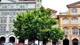 Malostranské náměstí bez aut ožívá. Postaví tu kino a vystaví i sochy