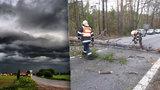 Bouřky na Třeboňsku pokácely stromy a zpozdily vlaky. O víkendu se vyjasní