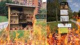 Vypálené hmyzí hotely v Praze 8 radnice obnoví: Budou ale stát na nových místech