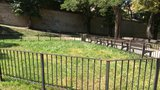 Lidé už měsíce dumají nad záhadnou ohradou. Objevila se v pražském parku