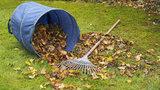 Co s podzimním odpadem ze zahrádky? Ve Vinoři přistaví od září kontejnery na bioodpad