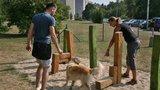 Otestováno, zahájeno: První psí hřiště v Praze 12 funguje na plný provoz