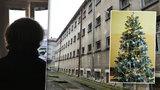 Štědrý den ve vězení: Budíček v 6, fotbal a k jídlu řízek s ovocem