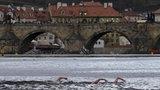 Nový rok v Praze přivítají také tříkráloví otužilci. Podplavou Karlův most