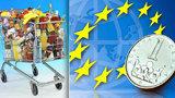 Levný tabák i sýry, vysoké ceny u ryb: Je v Česku oproti Evropské unii draho?