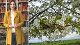 Jaro v plném proudu! V pondělí Prahu zkropí déšť, další dny budou projasněné teplým sluncem