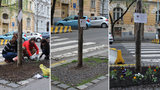 Nadšenci na ulicích vytváří vlastní malé zahrádky: Pražané jim za to děkují