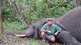 Lovec na safari střílel divoká zvířata: Při posledním lovu ho rozdrtil slon