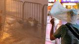 Kvůli Tajfunu v Číně evakuovali 27 tisíc lidí. Půl milionu obyvatel je bez proudu