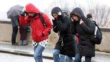 Na Česko se žene silný vítr. Bude i sněžit, tvrdí předpověď