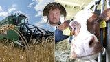 České zemědělství vymírá, chybí 20 tisíc lidí. Mezi krávy nechtějí ani vězni