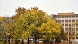 Vytáhněte pršipláště, do metropole přišel pravý podzim. Pražany čeká ochlazení i déšť