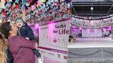 Ponožkový rekord! Pro předčasně narozené děti se na Žofíně vybralo přes 10 tisíc párů