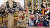 Tipy na víkend: Za Ladovým Mikešem, císařem Napoleonem i na exkurzi do hřebčína
