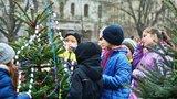 Děti ozdobily živé vánoční stromky: K vidění na Míráku budou až do Štědrého dne