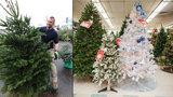 Umělý vánoční stromek může ohrozit vaše zdraví. Těžkými kovy a ftaláty