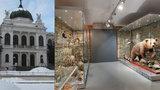 Poznejte Slezsko! Opavské muzeum má přes 2 miliony předmětů ve sbírce