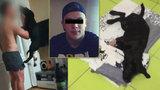 Pro tyrana štěněte 3 roky natvrdo! Jakub (24) z Prachatic musí zaplatit: Lidé podepisují petici
