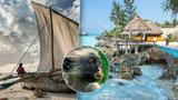 Za nedotčenou exotikou: Objevte Zanzibar, jeden z posledních přírodních rájů na Zemi
