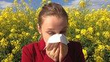 Bouřky dávají alergikům zabrat. Pyly jsou před nimi nejagresivnější