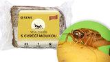 Pozor na to, jaký chleba kupujete! Novinka ze cvrčkové mouky je na pultech