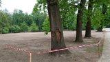 Ve Stromovce renovují trávník tlakovým nástřikem travního semene. Platí sem zákaz vstupu
