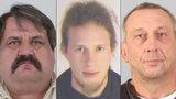 Povedený trojlístek provinilců z Hodonína, kterému se nechce do vězení: Neviděli jste je?