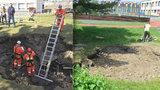 Kráter z Černého Mostu nechalo město zasypat: Na školní zahradu se brzy vrátí děti