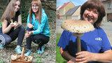 Venku je vedro k padnutí, čeští houbaři přesto nelení. Podívejte se na ty macky