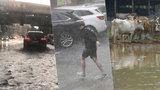 Přívalové deště sužují Česko, hrozí i bleskové povodně. Jak ochránit svůj život a majetek?