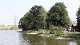 """""""Nejšpinavější"""" rybník v Praze čeká očista. Šeberák chystají odbahnit, mohla by se tak zlepšit kvalita vody"""