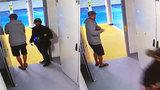 """VIDEO: """"Žábu"""" za 50 tisíc naložili do auta bez značek a ujeli! Zloděje z proseckých garáží hledá policie"""