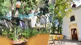 VIDEO: Pražané u Nuselských schodů vytvořili oázu klidu. Psí výkaly nahradili květinami a posezením