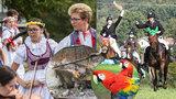 Tipy na víkend: Posvícení, dýňobraní Hubertova jízda i exoti v Olomouci