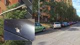 Holubi na Ládví nadměrně kálí na auta: Před poškozením ochrání vozy speciální bodce proti ptactvu