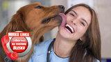 Až 58 % Čechů má doma zvířecího mazlíčka! Jak si vybrat psa z útulku? Jak předělat domácího tyrana? Poradí odborníci na Horké lince