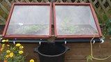 Poslední babí léto je tu: Jak na zahradě i v kuchyni ušetřit čas a peníze?