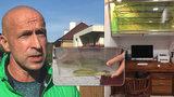 Smrtelně jedovatá mamba našla nový domov: Herpetolog si hada »vystavil« v pracovně