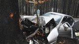 """Opilý šofér na Chrudimsku """"obmotal"""" strom: Měl 1,6 promile a zákaz řízení do roku 2025"""