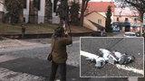 Český Brod zahájil odstřel holubů. Obyvatelé protestují