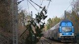 Mezi Čerčany a Senohraby u Prahy nejezdily vlaky. Mohl za to spadlý strom