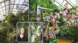 Dětský prstík v masožravce a 20 tisíc druhů rostlin: Pro Evu (34) je práce v botanické zahradě každodenním dobrodružstvím