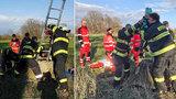Chlapeček (4) se v Pardubicích propadl do čtyřmetrové šachty: Zachraňovali ho hasiči