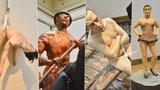 Nahý muž v loďce jako živý: V Rudolfinu vystavují 17 soch lidského těla