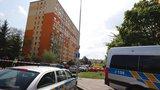 Vražda v Modřanech: Vrah úmyslně zapálil byt! Policie hledá svědky
