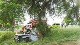 Smrtelné předjíždění: Dva lidé zemřeli u Strakonic po nárazu do stromu